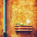 Wall Gutter Vase by Silvia Ganora