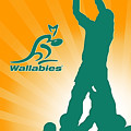 Wallabies Rugby by Wayne Doni