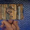 Wallflower by Harry Spitz