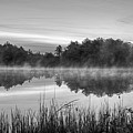 Wallis Sands Marsh Smoke On The Water Rye Nh Black And White by Toby McGuire