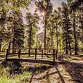 Wallowa Lake Foot Bridge by Marcia Darby
