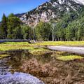Wallowa Lake Reflections by Marcia Darby