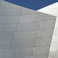 Walt Disney Concert Hall 20 by Bob Christopher