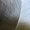 Walt Disney Concert Hall 4 by Bob Christopher