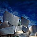 Walt Disney Concert Hall by Anthony Dezenzio