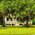 Wando River Homestead by Dale Powell