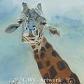 Wanna Neck by Gloria Condon