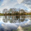 Wanstead Park Reflections by Vicki Spindler