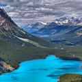 Waputik Mountain Lake by Adam Jewell