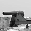 War Gun by Michelle Powell