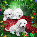 Warm Fuzzy Holiday by Carol Cavalaris