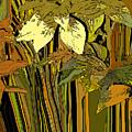 Warm Leaves by Ian  MacDonald