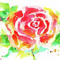 Warm Red Rose  by Nada Meeks