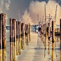 Warm Reflections In The Marina by Tom Gari Gallery-Three-Photography