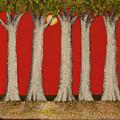 Warm Sky, Cool Trees by Shirley Fox