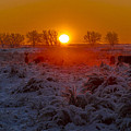 Warm Sunrise In Winter by Jeff Shumaker