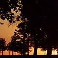 Warm Sunrise by Tiffany Erdman