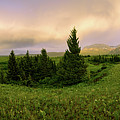 Warm The Soul Panorama by Chad Dutson