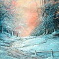Warm Winter Fantasy by Sally Seago