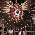 Warrior Feathers by Audrey Robillard