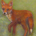 Wary Fox Cub by Richard James Digance