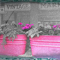 Wash Tub Planters by Jim Love