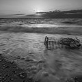 Washed Up Crab Cage 16x9 Bw by Michael Ver Sprill