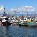 Washington Harbor by Carol Groenen