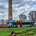 Washington Monument And Tulip Library by Thomas R Fletcher