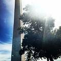 Washington Monument by Angela Rath