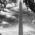 Washington Monument Black And White by Tom Gari Gallery-Three-Photography
