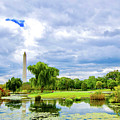 Washington Monument by Brock Wilson