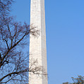 Washington Monument by Clayton Bruster