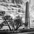 Washington Monument by Erika Fawcett