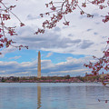 Washington Monument  by Juergen Roth