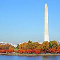 Washington On A Autumn Day by Jost Houk
