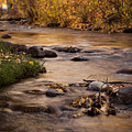 Washoe Park In Autumn by Sandra McNair