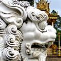 Wat Krom 29 by Randall Weidner