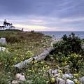 Watch Hill Lighthouse - Fm000062 by Daniel Dempster