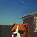 Watchdog by James W Johnson