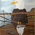 Watchful Eagle by Juanita Couch