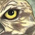 Watchful Eye by Jennifer Skalecke