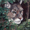 Watching by Brenda Thour