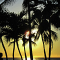 Watching The Hawaiian Sunset  by Maria Keady