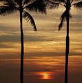 Watching The Setting Sun by Pamela Walton