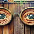 Watching You by Mariola Bitner