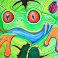 Watching You Red Eyed Tree Frog by Nick Gustafson
