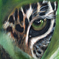 Watching You Watching Me by Fiona Jack