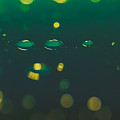 Water Drops On Surface 6 by Marc Daly