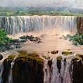 Water Fall by Howard Scherer